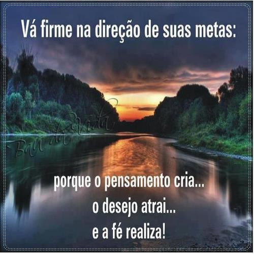 direcao_metas